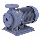 FSD型  片吸込渦巻ポンプ 60Hz