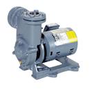 RQD型  自吸式渦流ポンプ  60Hz