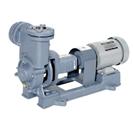 RQ型  自吸式渦流ポンプ  60Hz